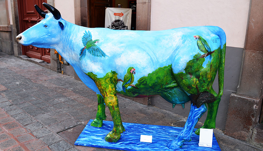 Vaca representativa del municipio Arroyo Seco