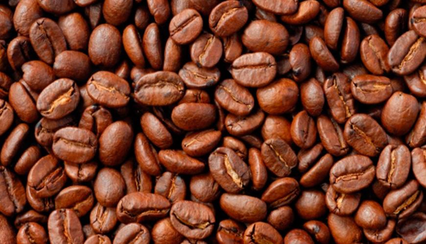 Las altitudes de las fincas de café oscilan entre los 600 y 1250 metros