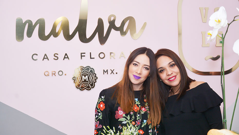 <h1>Malva &#038; Vole inauguran sucursal en Querétaro</h1>
