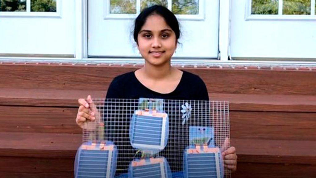 <h1>Adolescente crea herramienta para transportar energía eléctrica</h1>