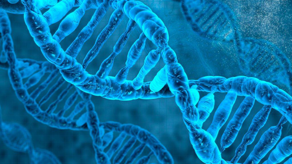 <h1>Secretos que tu ADN podría revelar</h1>