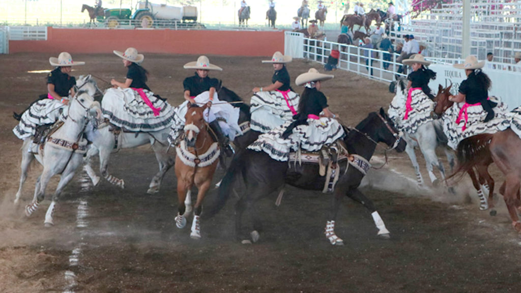 <h1>Programa Oficial del VIII Campeonato Internacional Charro de la Arena Vallarta</h1>