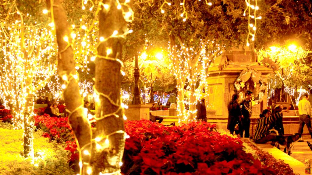 <h1>No habrán adornos navideños este año en Querétaro</h1>